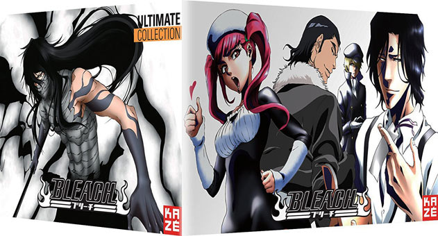 Bleach-coffret-collector-2-edition-limitee-saison-4-5-6-oav-film-DVD