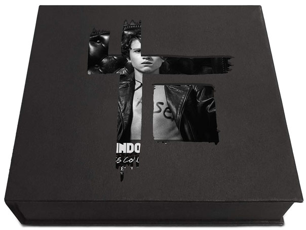 Indochine coffret collector Single 1981 2001 coffret intégrale Vinyle CD
