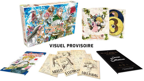 edition-collector-anime-japanimation-serie